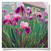alice-frenz-my-favorite-irises-box-thumbnail